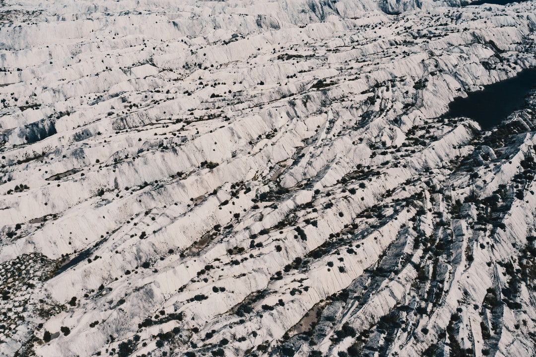 A flock of birds sitting on top of a snow covered slope